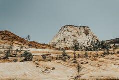 Rotsen en schilderachtige canions in Zion National Park De Natuurreservaten van de V.S. royalty-vrije stock fotografie
