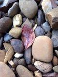 Rotsen en stenen stock afbeeldingen