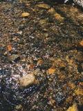 Rotsen en stenen binnen duidelijke zoetwater royalty-vrije stock foto