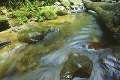 Rotsen en water Stock Afbeeldingen
