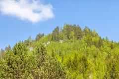 Rotsen in het Nationale park van rotsen adrspach-Teplice - Tsjechische Republiek Royalty-vrije Stock Foto