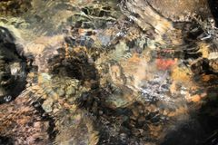Rotsen in het water Stock Foto's
