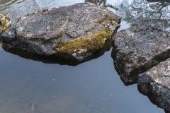 Rotsen in kalm water Royalty-vrije Stock Fotografie