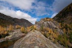 Rotsen, meer en kleurrijke berken. Stock Fotografie