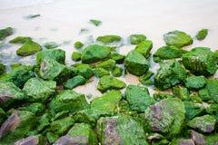 Rotsen met groen mos Royalty-vrije Stock Fotografie