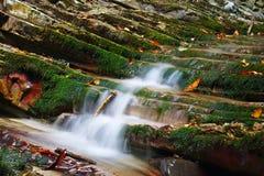 Rotsen met mos met stromende stromen van de bergkreek die worden behandeld stock foto's