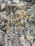 Rotsen met Paddestoel Royalty-vrije Stock Afbeeldingen