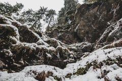 Rotsen met sneeuw en ijskegels worden behandeld die Stock Foto