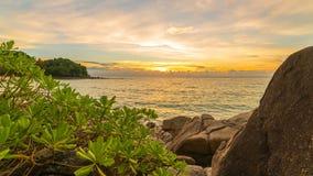 Rotsen met tropische installaties op het strand bij zonsondergang timelapse in Phuket, Thailand stock videobeelden