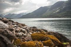 Rotsen in Noorwegen Stock Foto's