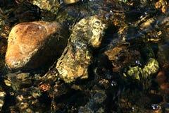 Rotsen op bodem van een stroom Stock Afbeeldingen