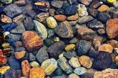 Rotsen op een rivierbed Stock Afbeeldingen
