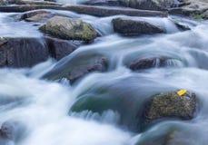 Rotsen op rivier Royalty-vrije Stock Foto's