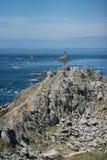 Rotsen in Pointe du Raz Royalty-vrije Stock Afbeeldingen