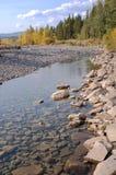 Rotsen in rivierbed Royalty-vrije Stock Fotografie