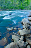 Rotsen in Stromend Water in het Bos Stock Foto