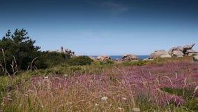 Rotsen van het Ploumanach de roze graniet Bretagne Frankrijk stock videobeelden