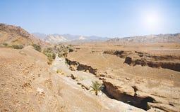 Rotsen van Rub al Khali, de V.A.E Royalty-vrije Stock Foto