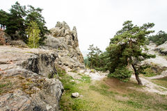Rotsenvorming in de bergen ` Harz ` Stock Foto