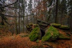 Rotshoogtepunt van mos in het kleurrijke de herfstbos dichtbij Zkamenely zamek stock afbeeldingen