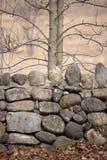 Rotsmuur met Bomen in de Herfst Royalty-vrije Stock Afbeeldingen