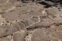 Rotstekeningen in vulkanische rots op de Sleep van de Koning, Kona, Hawaï worden gesneden dat royalty-vrije stock fotografie
