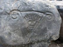 Rotstekeningskoning van Atures, in weinig Eiland Orinoco Royalty-vrije Stock Foto's