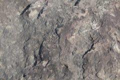 Rotstextuur Stock Afbeelding