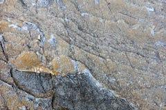 Rotstextuur en oppervlakteachtergrond Gebarsten en doorstaan natur Stock Foto's