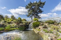 Rotstuin bij Kew-Tuinen stock fotografie