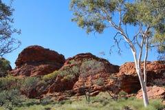Rotsvorming bij de Koningencanion in Australië Royalty-vrije Stock Afbeeldingen