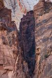 Rotsvorming Zion National Park stock afbeelding