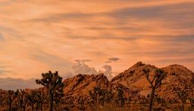 Rotsvormingen die bij Schemer in Joshua Tree National Park, Californië gloeien stock fotografie