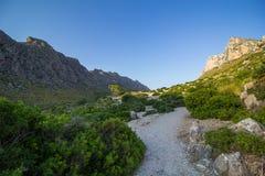 Rotsvormingen en Mediterrane flora dichtbij Pollenca in het eiland van Mallorca, Spanje stock foto's
