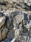 Rotsvormingen, Hogere Bristlecone-Lijnsleep, MT Charleston, Nevada royalty-vrije stock afbeeldingen