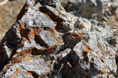 Rotsvormingen, Hogere Bristlecone-Lijnsleep, MT Charleston, Nevada royalty-vrije stock fotografie
