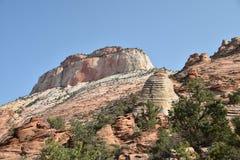 Rotsvormingen in Zion National Park, Utah, de V.S. stock afbeeldingen