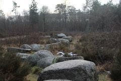 Rotsweg in Aard Stock Foto's