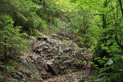Rotsweg in Slowaaks Paradijs stock afbeelding