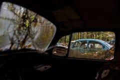 Rottamaio automobilistico antico d'annata in autunno - tipo 1/scarabeo abbandonati di Volkswagen - la Pensilvania fotografia stock libera da diritti