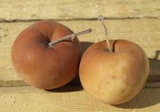 Rotte appelen stock afbeeldingen