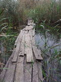 Rotte brug over het meer Stock Afbeeldingen