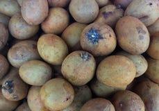 Rotte Bruine Sapodilla stock foto's