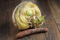 Rotte groenten royalty-vrije stock foto