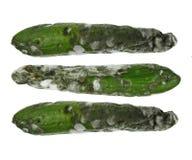 Rotte komkommers stock fotografie