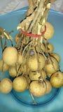 Rotte Longan-vruchten Royalty-vrije Stock Afbeelding