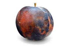 Rotted Apple Royalty Free Stock Photos