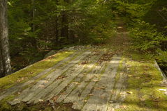 Rotted bridge to overgrown trail. Leading up hill Royalty Free Stock Photo