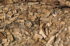 Rotted dry crushed mouldering wood background Royalty Free Stock Photography