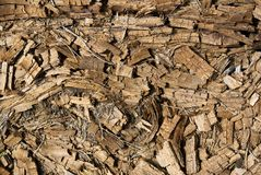 Rotted dry mouldering crushed wooden background Royalty Free Stock Images